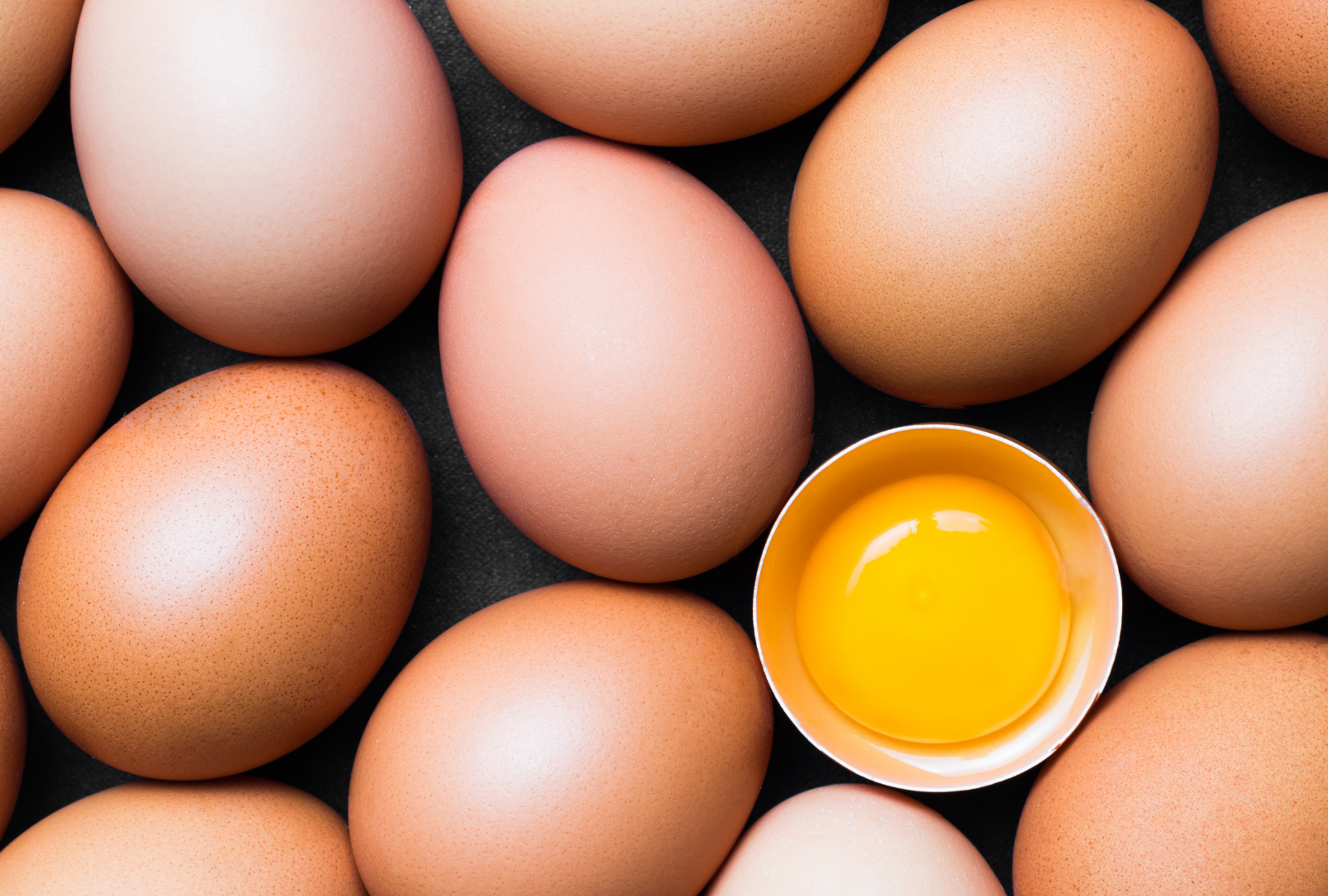 eggs and gut microbiome